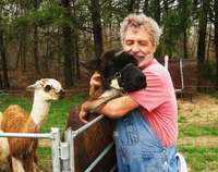 Llama_shearing_april_9_2011_066