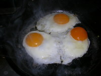 Fried_eggs_up_close